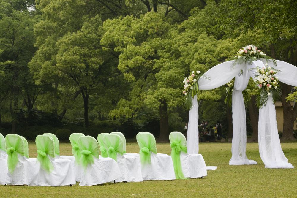 29968597-wedding-reception